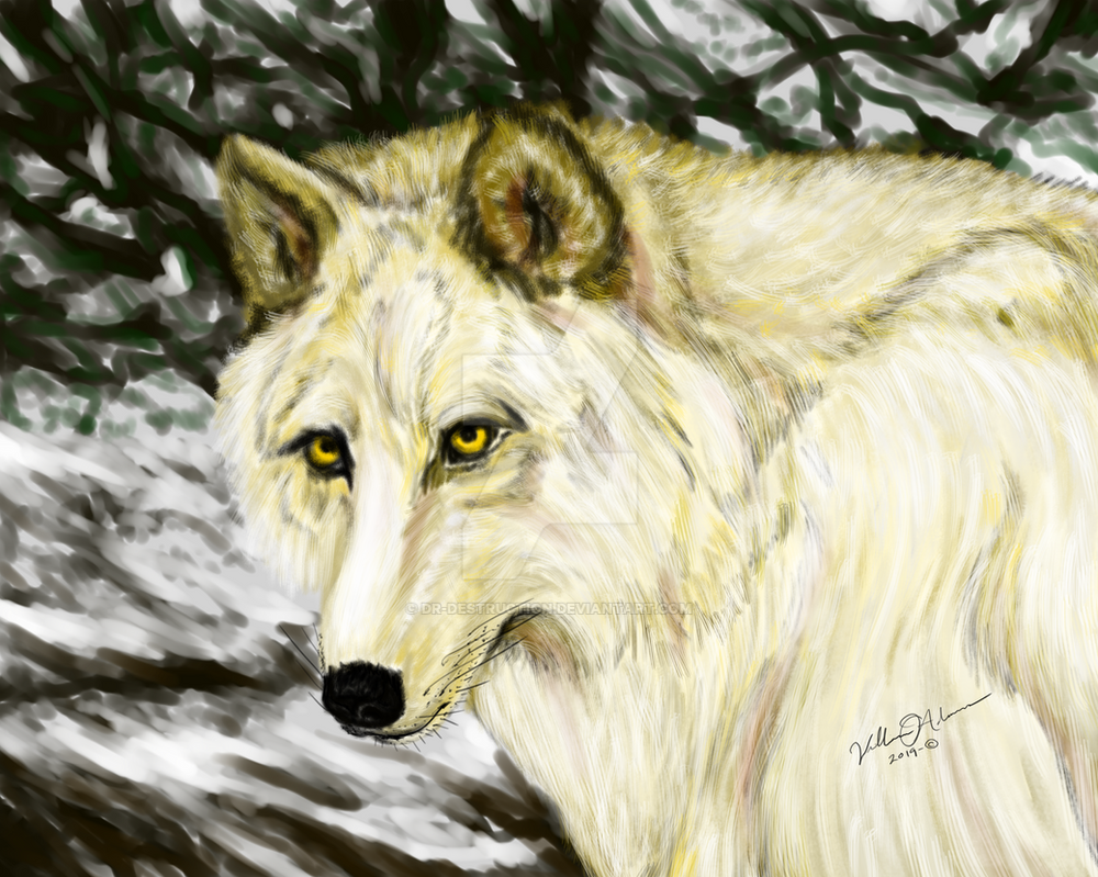 Wolf Painting by Dr-Destruction