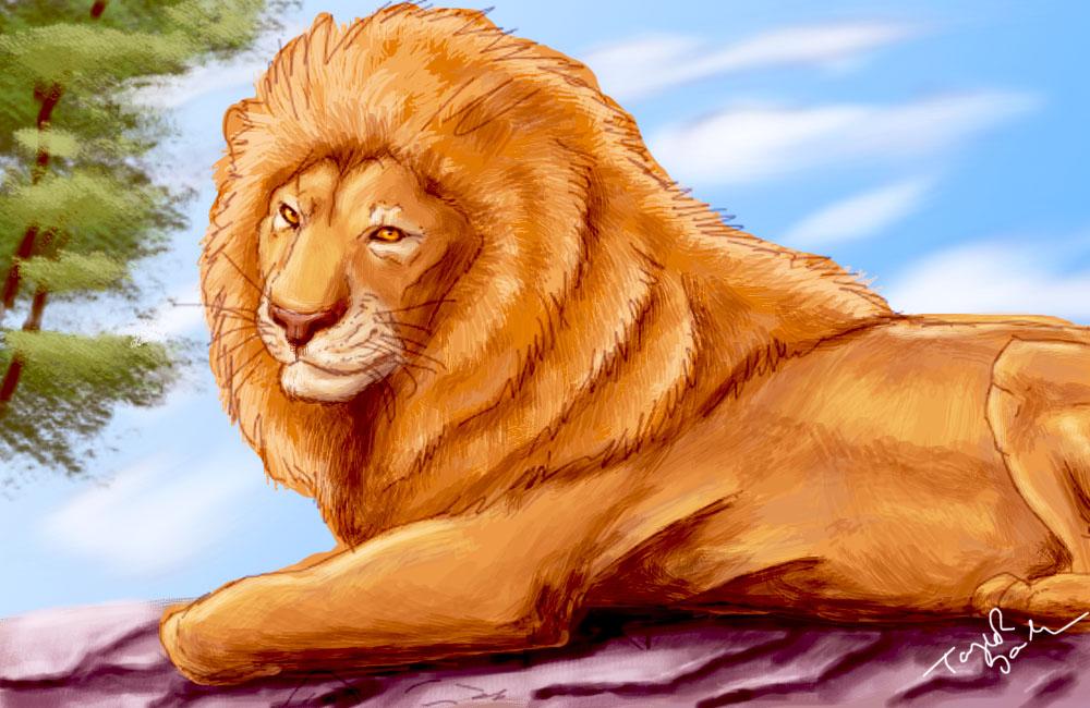 Lion by grypwolf-fan