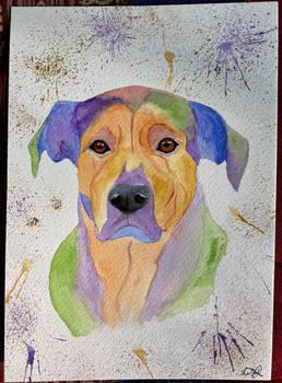 A5 Custom Dog Portrait