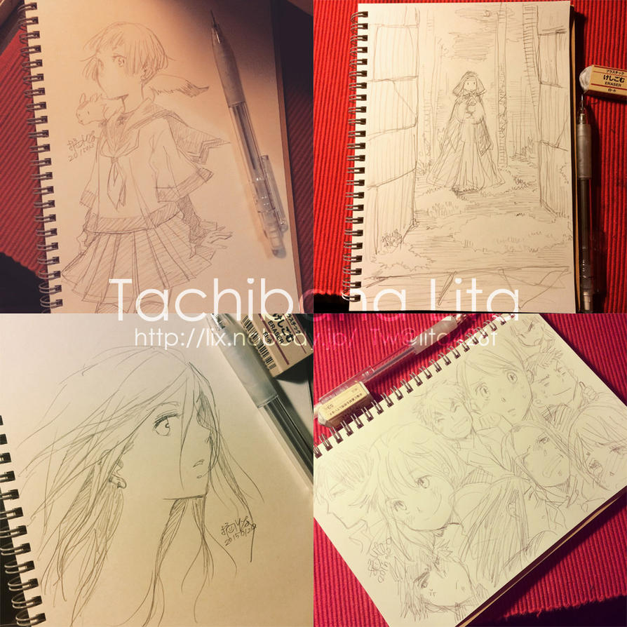 7 pictures drawn around this time last year by lita426t