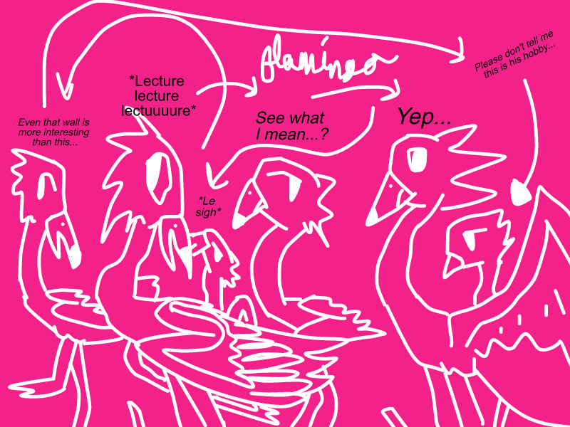 Flamingo Lecture Party by FlamingGatorGirl
