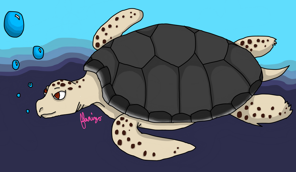 Turtle by FlamingGatorGirl