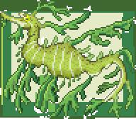 Leafy Sea Dragon by ZioCorvid