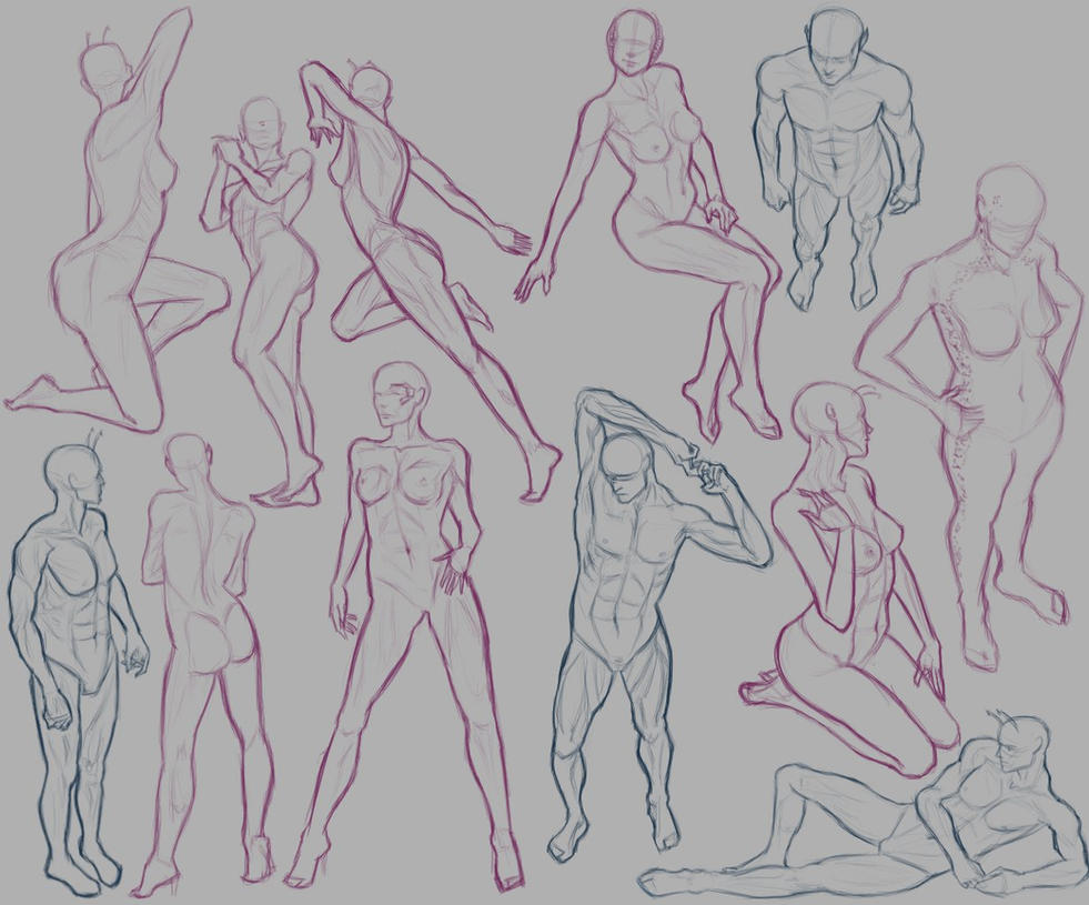 Anatomy Practice 2 by tin-plated-dictator on DeviantArt