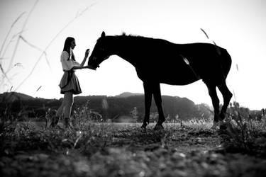 Restless heart Western soul 2