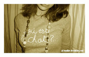 Ou est Le Chat ? by gr3nadine