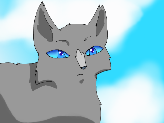Animated warrior cats
