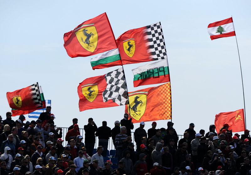 Ferrari Supporter
