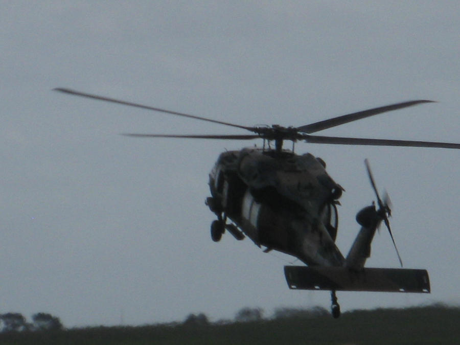 Avalon 2011 Black Hawk