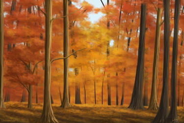 Autumn Forest by Devinital