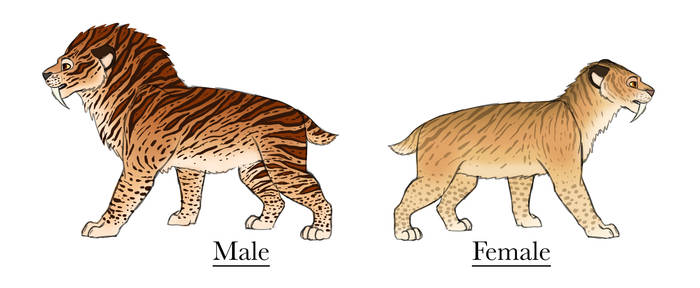 Personal Smilodons refs