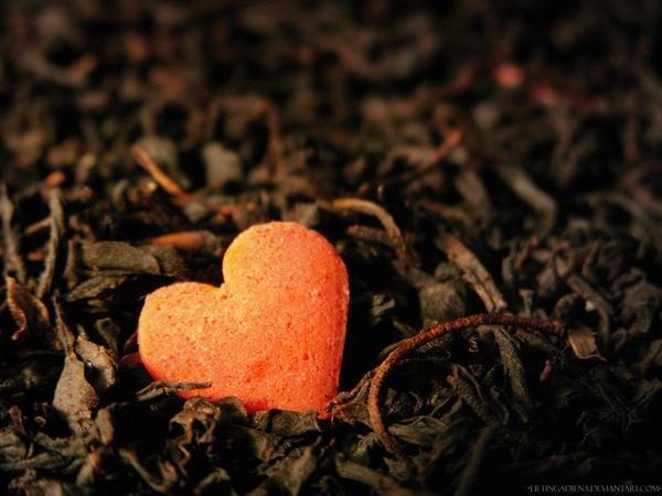 Heart by LietingaDiena