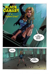 Black Canary: Canary Cries pg 1