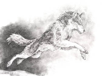 Leaping Wolf by Aetharius