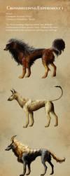 Crossbreeding: Arcanine and Houndoom by Aetharius