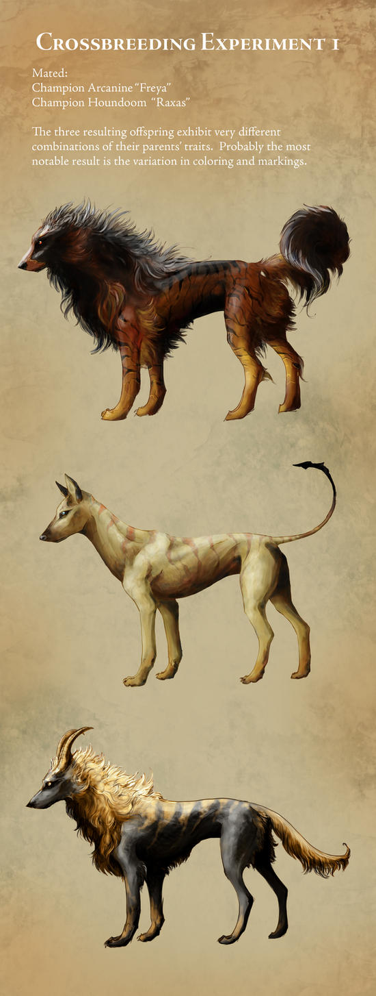 Arcanine and houndoom