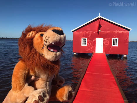 Rory sees the Red Boat House