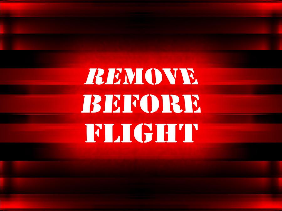 remove before flight by veraukoion on deviantart