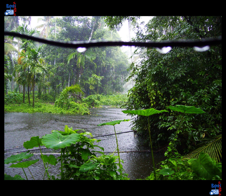 Kerala Monsoon 03 By Impeccablez On Deviantart