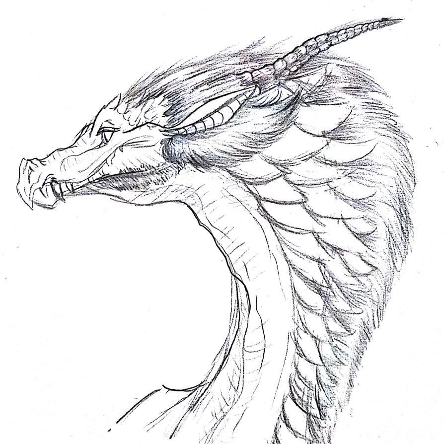 dwagon by Crystalpaw45