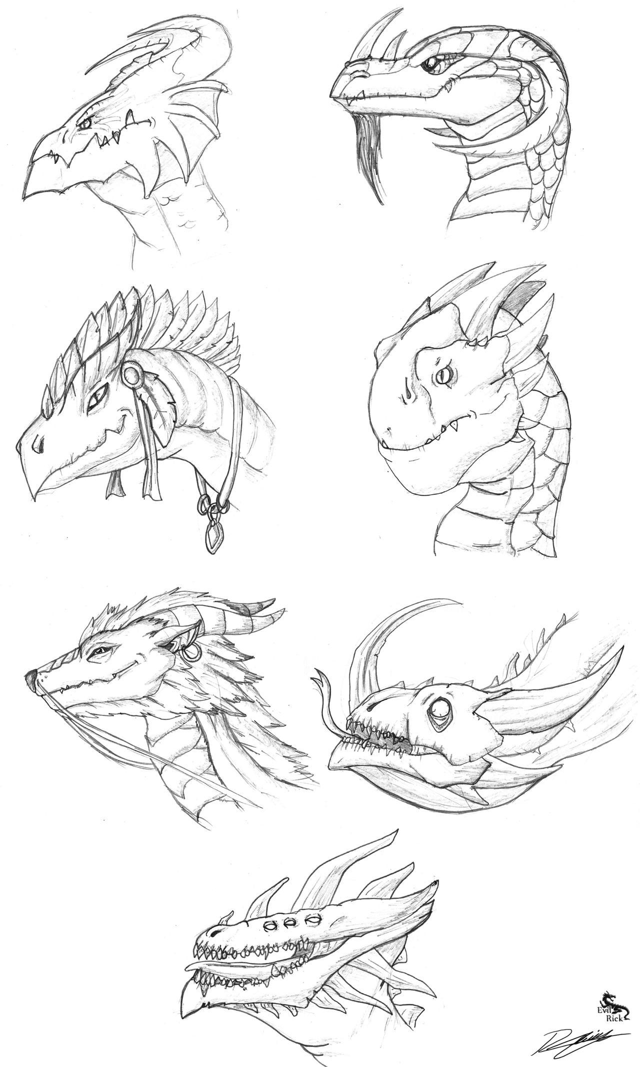 Dragons head designs by Evil-Rick on DeviantArt
