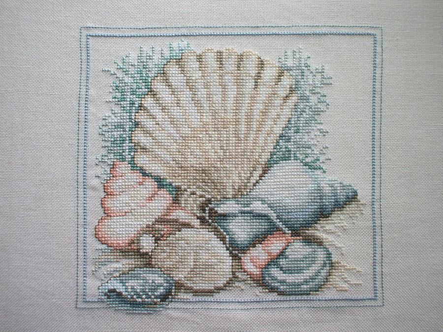 Seashells by Magical525