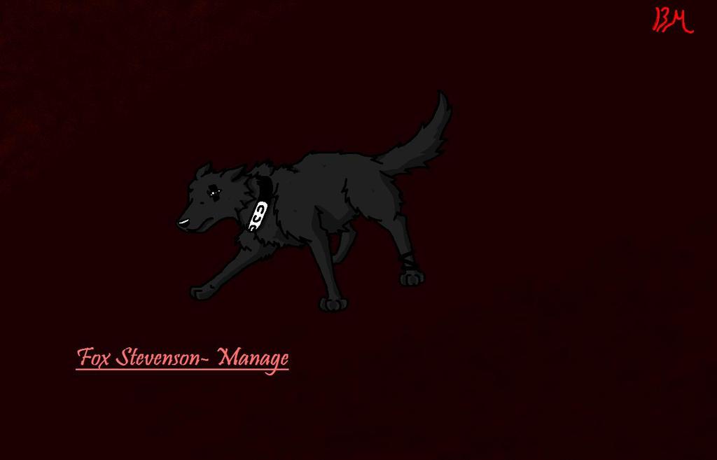 Fox stevenson-Manage by BlackMountain150