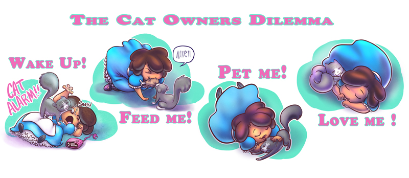 The cat owners delimma by mainasha