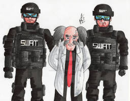 Dr. Wily has been apprehended