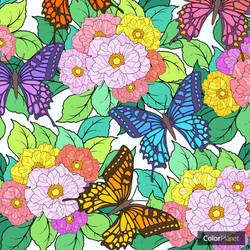 Flowers with Butterflies: Color Planet