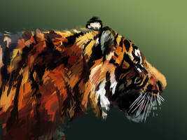 45 Minute Painting-Tiger by RaerBear