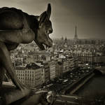 Paris Gargoyle 2 by Phil-Norton