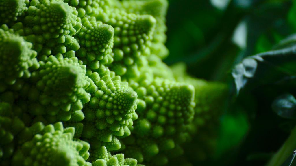 Mathematical Food