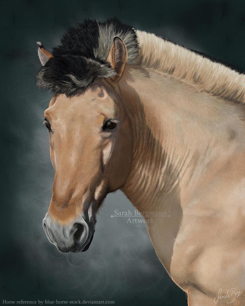 Fjordhest Portrait by BLACKNIGHTINGALE81