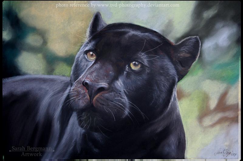 Black Panther By Portela On Deviantart: Pastel By OoBLACKNIGHTINGALEoo On DeviantArt