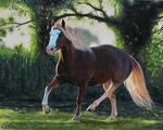 Sun Trotter - Acrylic Painting by ooBLACKNIGHTINGALEoo