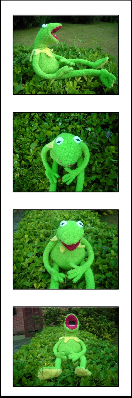 Kermit plushie by BluestWaves