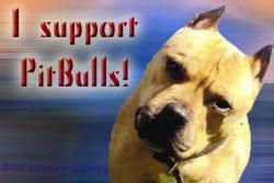 I Support PitBulls by tryptikangel