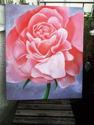 Rose acrylic painting by AmyBurton