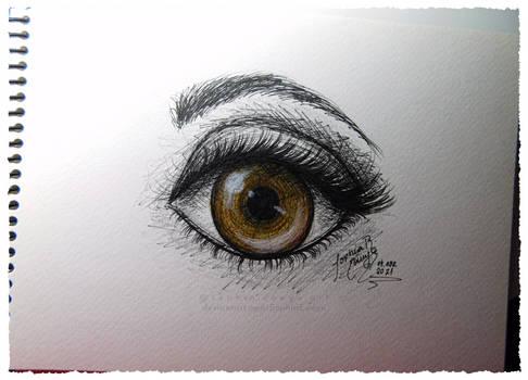 Eye Tutorial Practice