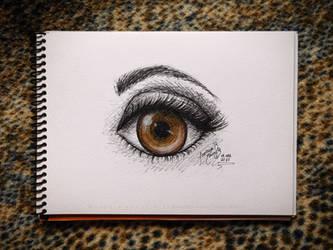 Eye Practice - Tutorial by reiq
