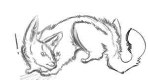 wolf sketch~(free base/lineart)