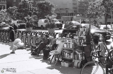 The Roving Bookstore