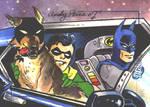 Bat-hound, Robin, Batman