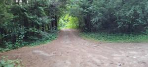 Deeper Trail