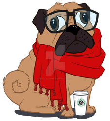 Starbarks Scarf Pug