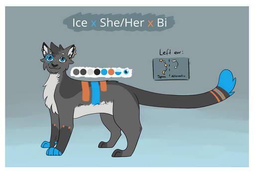 Ice ref 2021