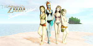 LoZ: Swimsuit Edition Cover