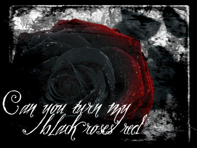 Black Roses Red by starlitxdisaster