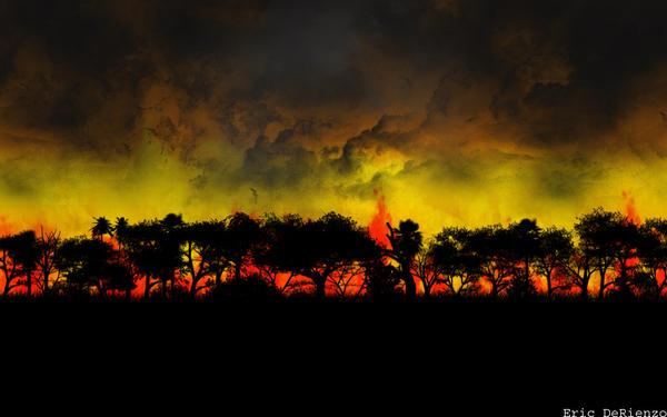 Forest Fire Wallpaper by Jombo-Sized